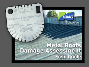 Metal Roofs Assessment Combo